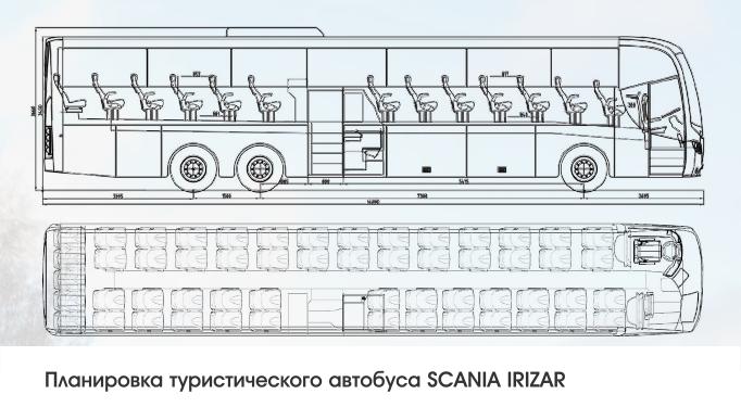 Перевозка детей на автобусе из Тольятти Самары Сызрани Жигулевска